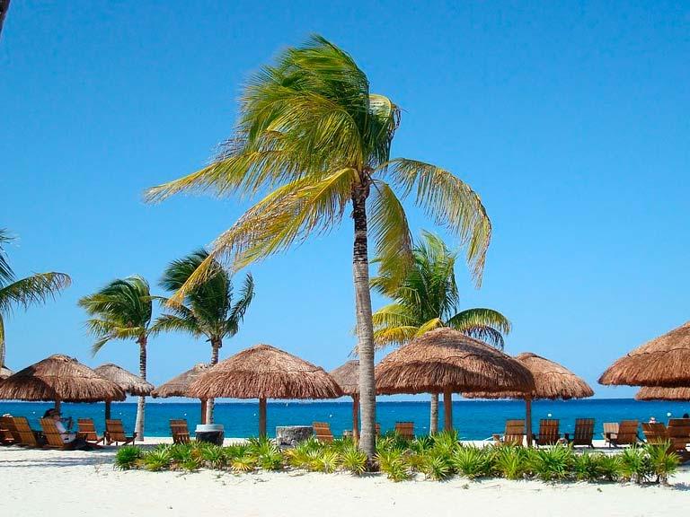 Qué Hacer en Isla Cozumel