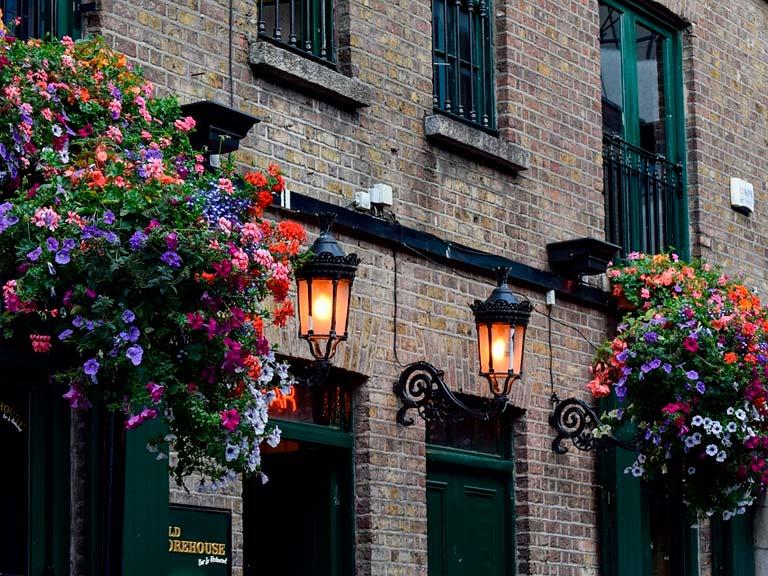 ¡Actividades turisticas en Dublin en espanol!