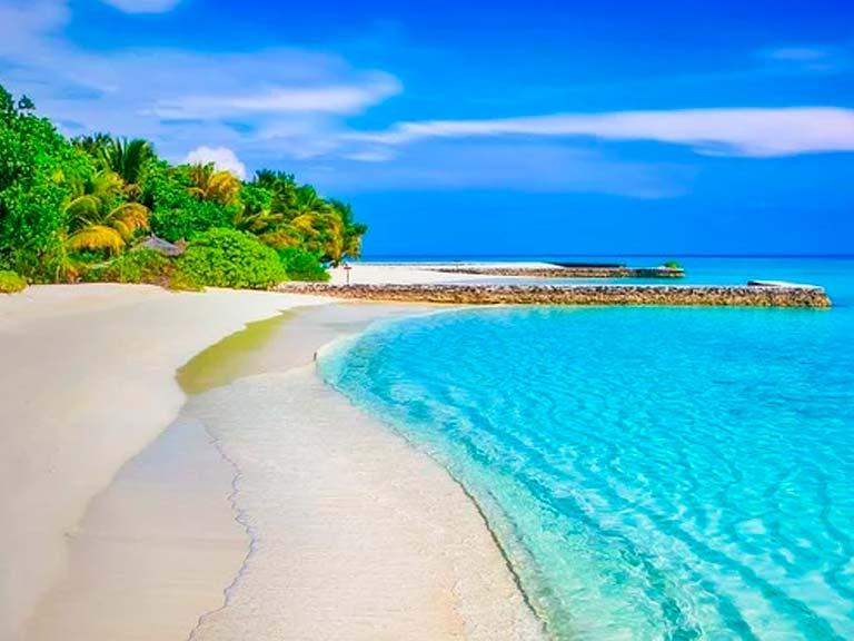 Si estas organizando un viaje a la Riviera Maya y quieres conocer algo más allá de lo tradicional, entonces lo tuyo es el tour al Parque Nacional Isla Contoy. Atrévete y vive esta experiencia sin parangón.